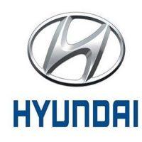 Hyundai Lowering Springs