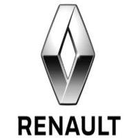 Renault Lowering Springs