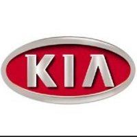Kia Lowering Springs