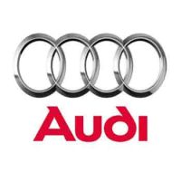 Audi Running Boards