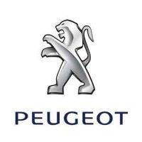 Peugeot 307 Lowering Springs